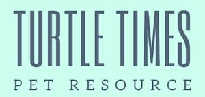 Turtle Times