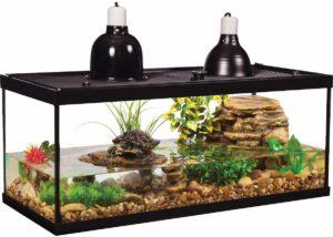 turtle tank sample