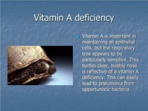 vitamin-a-deficiency